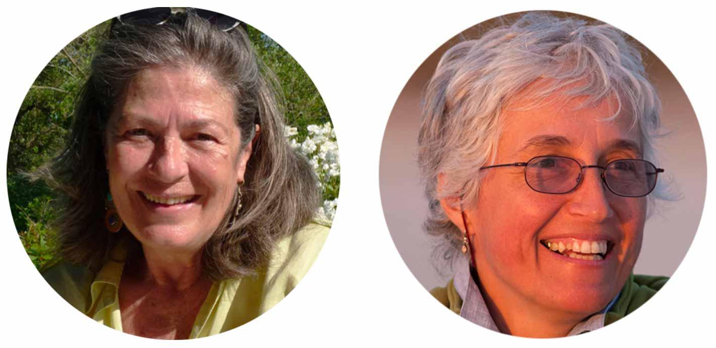 Paola Mamone e Anna Rossi - Interessere in azione su Sinergie vitali